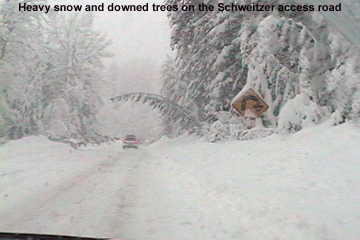 An image of the steep, twisty Schweitzer Mountain Road leading up to Schweitzer Mountain Ski Resort during a big Pacific winter storm - a tree is shown bending into the road near one of the switchbacks due to the heavy snow