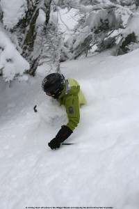 An image of Erica skiing in neck deep snow in the Villager Trees area of Bolton Valley Ski Resort in Vermont