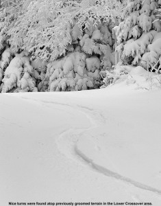 An image of ski tracks in powder