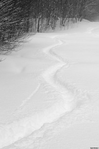 An image of deep trakcks in the snow from powder skiing at Bolton Valley