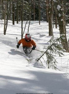 Ty skiing powder in the Villager Trees
