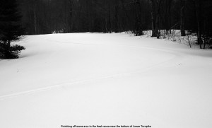 Picture of ski tracks in the powder on Lower Turnpike