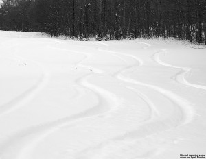 Ski tracks in powder