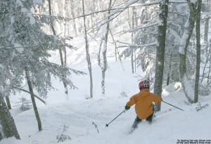 An image of Ty skiing in the Wood's Hole Glades at Bolton Valley