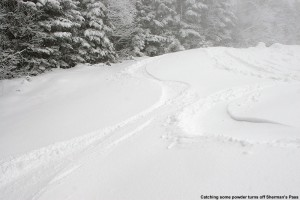 An image of ski tracks in the fresh powder along the edge of the Sherman's Pass Trail at Bolton Valley in Vermont - December 23, 2011