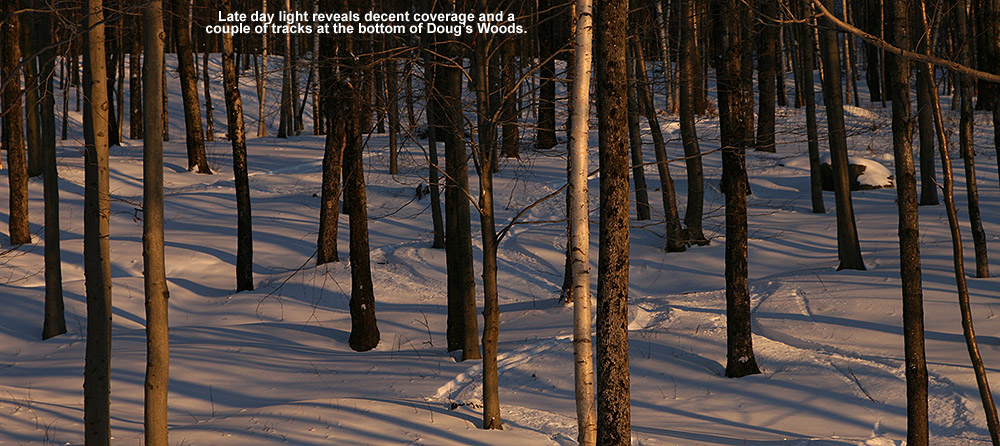 "An image of late winter light illuminating ski tracks at the bottom of the ""Doug's Woods"" glade at Bolton Valley Ski Area in Vermont"