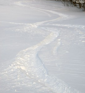 An image of ski tracks in nice powder snow on the Spell Binder trail at Bolton Valley Ski Resort in Vermont