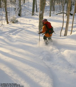 An image of Ty skiing a glade near the World Cup trail on the Nordic/backcountry network at Bolton Valley Ski Resort in Vermont