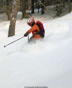 An image of Ty skiing a glade below the Heavenly Highway trail on the Nordic/backcountry network at Bolton Valley Ski Resort in Vermont