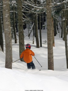 An image of Ty entering the Green Acres area of trees at Stowe Mountain Ski Resort in Vermont