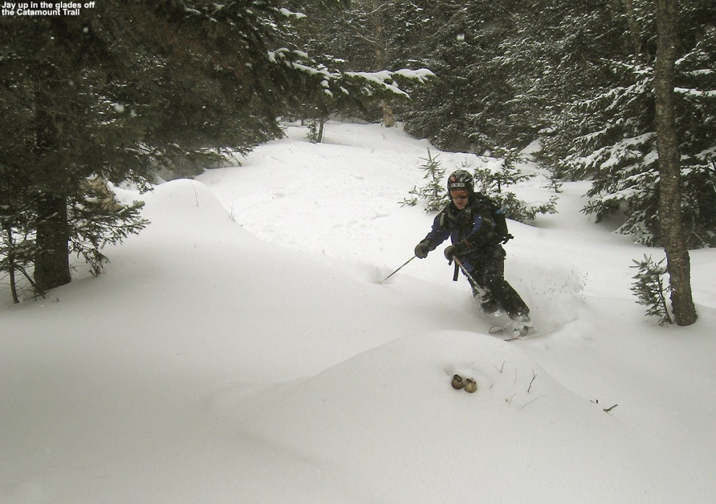 An image of Jay skiing powder in one of the glades off the Catamount Trail past Bolton Valley Ski Resort's Nordic & Backcountry terrain