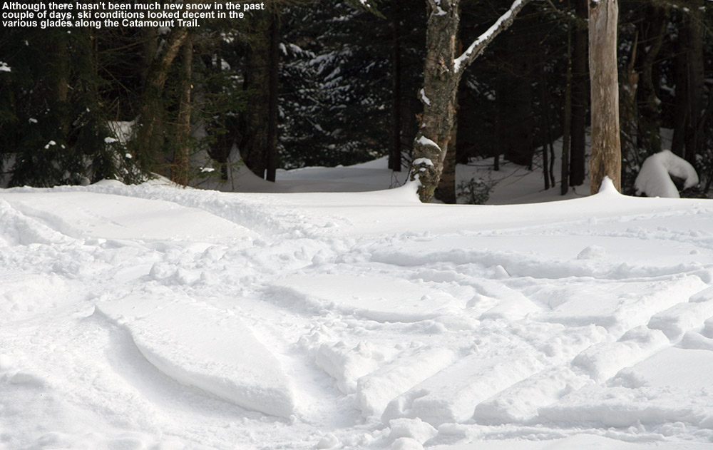 An image of ski tracks in powder snow above the Cotton Brook area connected to the Catamount Ski Trail and Bolton Valley's backcountry ski network in Vermont