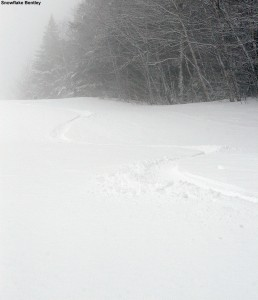 An image of ski tracks in fresh powder on the Snowflake Bentley trail at Bolton Valley Ski Resort in Vermont