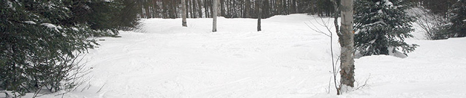 An image of the Glades trail at Bolton Valley Ski Resort in Vermont with packed powder conditions after some recent snowstorms