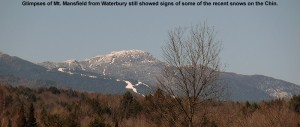 An image of recent snow in the alpine areas of the Chin on Mt. Mansfield in Vermont