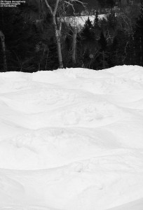An image of moguls on the Centerline Trail in April at Stowe Mountain Resort in Vermont
