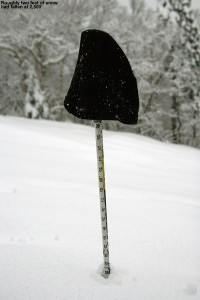 An image of my ski measurement pole showing a depth of roughly two feet at the 2,500' elevation on the Nosedive trail at Stowe Mountain Ski Resort in Vermont