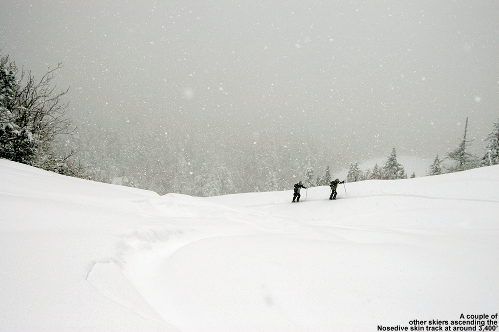 An image of two skiers ascending through deep snow via a skin track on the Nosedive trail at Stowe Mountain Resort in Vermont