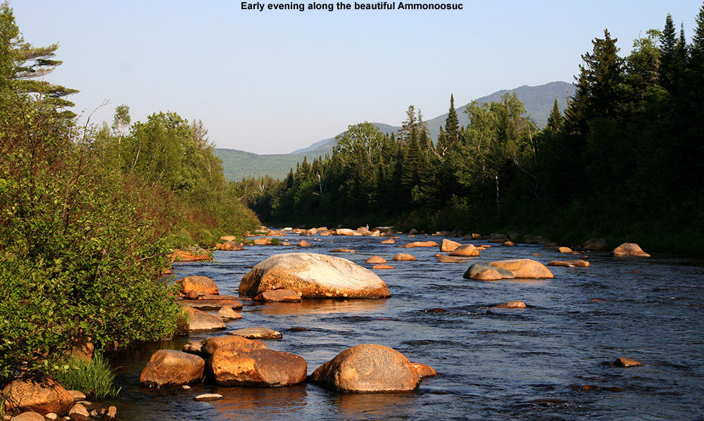 An image of the Ammonoosuc River in New Hampshire with early evening light