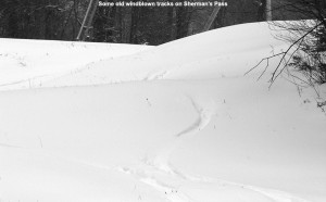 An image of old ski tracks on the Sherman's Pass ski trail at Bolton Valley Resort in Vermont after a November snowstorm