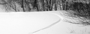 An image of a ski track in powder on the Twice as Nice trail Bolton Valley Resort in Vermont