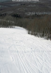 An image showing ski tracks on the Showtime trail at the Timberline area of Bolton Valley Resort in Vermont