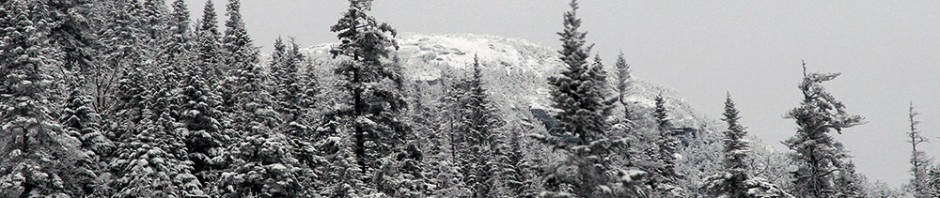 A winter image of the Adam's Apple portion of Mt. Mansfield in Vermont viewed from the Gondolier trail at Stowe Mountain Ski Resort