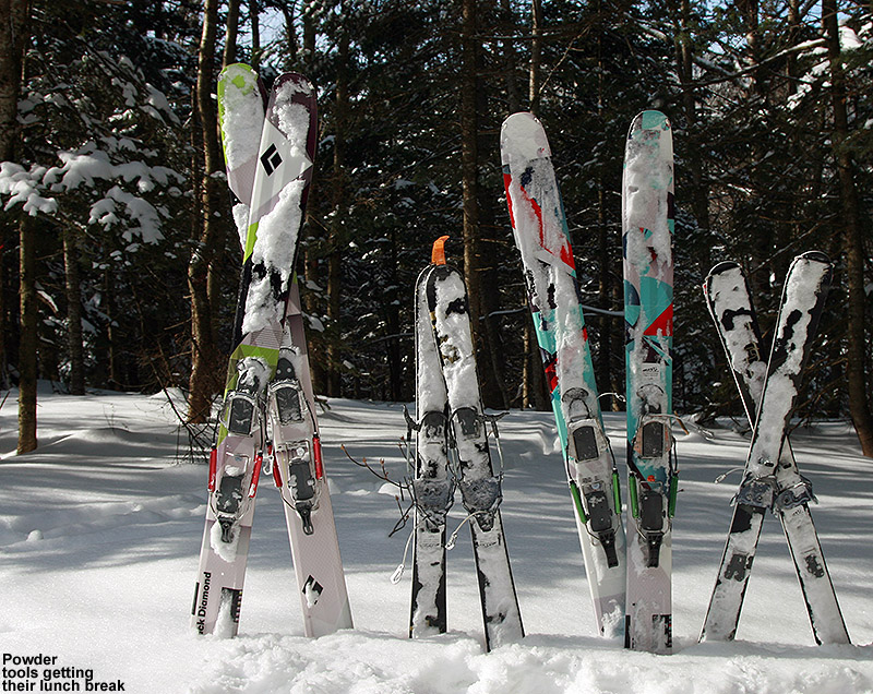 An image of Black Diamond AMPerage, Black Diamond Element, and two pairs of Volkl Gotama Junior skis mounted with Telemark bindings and sitting in the snow near the Bryant Cabin on the Bolton Valley Backcountry Network in Vermont