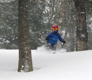 An image of Dylan skiing in powder in the Villager Trees area of Bolton Valley Ski Resort in Vermont