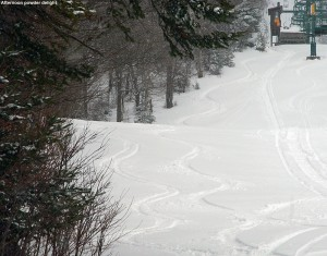 An image of ski tracks in powder on the Wilderness Lift Line trail at Bolton Valley Resort in Vermont