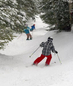 An image of Luke, Julia, and Dylan making their way down the Bruce backcountry ski trail near Stowe Mountain Resort in Vermont