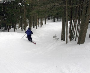 An image of Jay skiing on the Bruce trail near Stowe Mountain Resort in Vermont