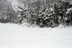 An image of ski tracks in powder on the Perry Merrill trail at Stowe Mountain Resort in Vermont during a spring storm on Memorial Day Weekend
