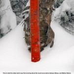 An image of the snow measurement stake near the top of Mt. Mansfield in Vermont