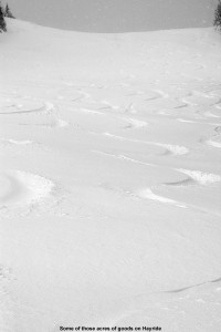 An image of ski tracks in powder on the Hayride trail at Stowe Mountain Resort in Vermont after a November snowstorm