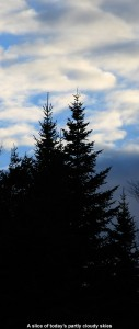 An image of partly cloudy skies behind some evergreens at Stowe Mountain Ski Resort in Vermont