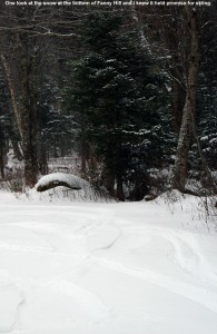An image of ski tracks in powder snow on the Fanny Hill Trail at Bolton Valley Resort in Vermont