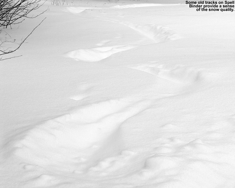 An image of old ski tracks in powder snow on the Spell Binder Trail at Bolton Valley Resort in Vermont