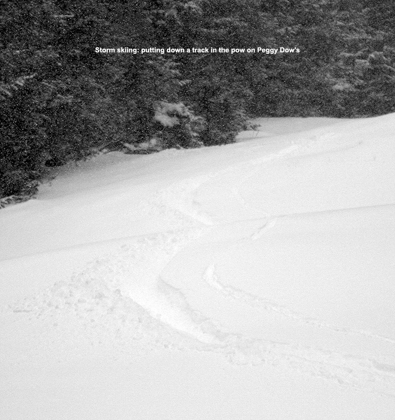 An image of a ski track in powder on the Peggy Dow's trail at Bolton Valley Resort in Vermont