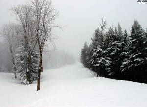 An image of the Alta Vista trail with a ski track in late April at Bolton Valley Resort in Vermont
