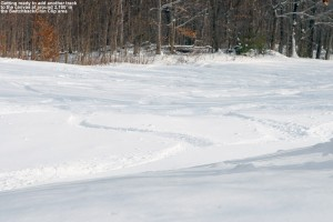 An image showing ski tracks in powder below the Chin Clip trail at Stowe Mountain Resort in Vermont