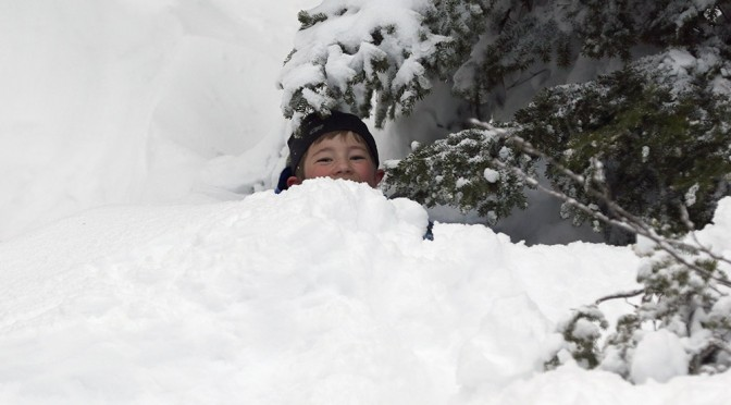 An image of Dylan looking out from deep snow in the trees of Mt. Mansfield at Stowe Mountain Resort in Vermont