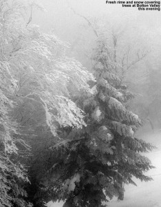 An image of trees with rime and snow at Bolton Valley Resort in Vermont