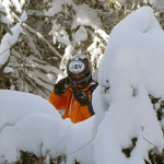 An image of Ty looking out from behind some snow-covered evergreens in the Villager Trees area of Bolton Valley Ski Resort in Vermont