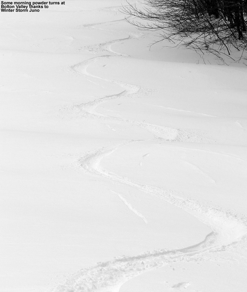 An image of ski tracks in powder snow on the Spell Binder trail at Bolton Valley Resort in Vermont thanks to Winter Storm Juno