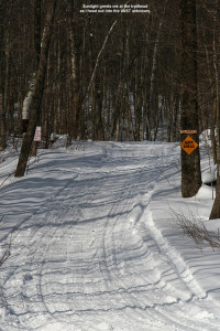 An image of part of the VAST (Vermont Area Snow Travelers) used as part of a backcountry ski tour in the Bolton Valley backcountry
