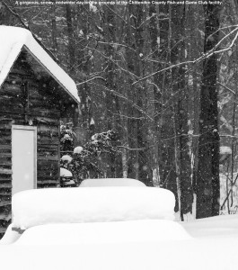 An image showing a snowy cabin and picnic table on the grounds of the Chittenden County Fish & Game Club in Richmond, Vermont