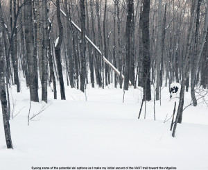 An image showing an open ski line in the forest below the VAST snowmobile trail in the Bolton Valley area of Vermont