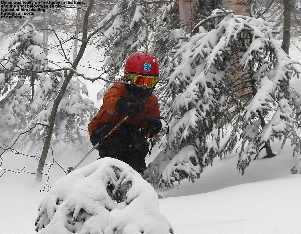 An image of Dylan cutting through some trees while skiing at Stowe Mountain Resort in Vermont