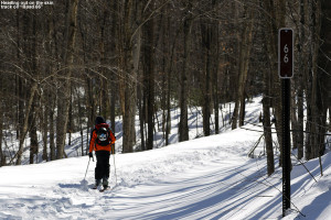 An image of Ty on the skin track on a backcountry ski tour in the Lincoln Gap area of Vermont